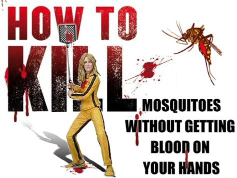 how to kill mosquitoes in home mosquito traps 101 a guide to using mosquito traps to