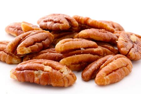 pecans and dogs attn owners beware these 4 nuts their dangers to dogs dr goodpet