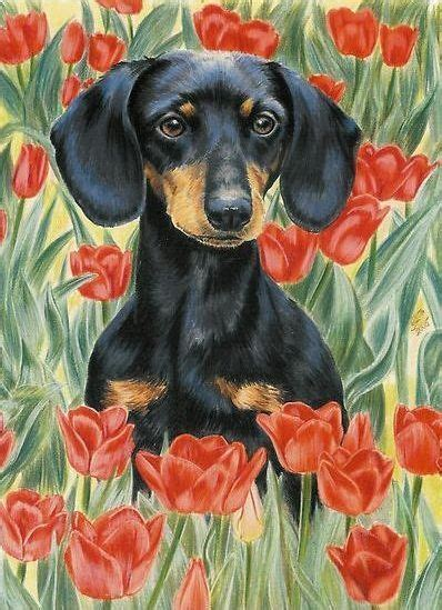 pin  belle amore dachshunds  dachshund traditional art dog paintings
