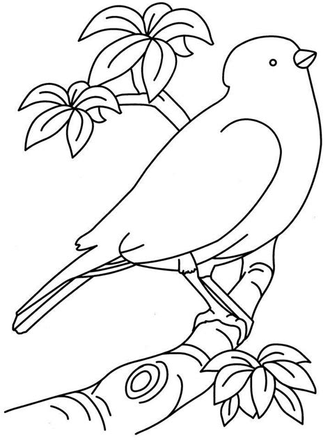 coloring pages of birds to print birds coloring page printable