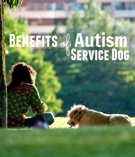 autism service amazing benefits of autism service