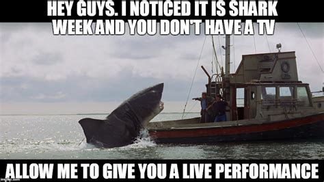 Jaws Meme - jaws the helpful thespian imgflip