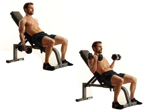 Curl Incline by The 23 Best Biceps Exercises Early To Rise