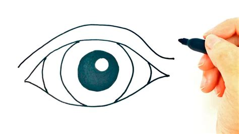 imagenes de ojos faciles de dibujar list of synonyms and antonyms of the word ojo dibujo ninos
