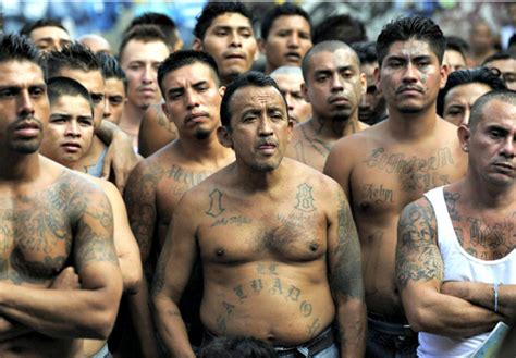 one third of 214 arrested ms 13 gangsters were