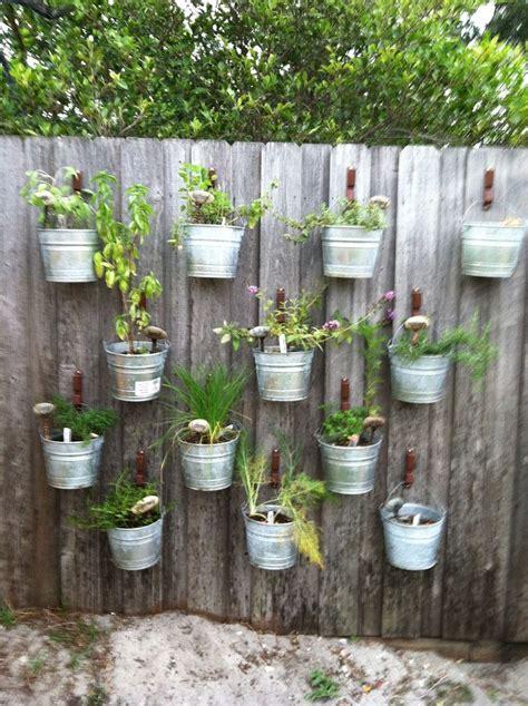 herbs on wall 39 best herb wall images on pinterest gutter garden