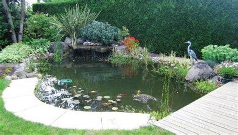 Bassin De Jardin Rectangulaire 3936 by Bassins Cascades Fontaines Piscine Et Jardins