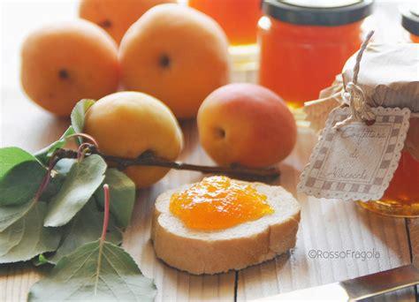 marmellata in casa confettura di albicocche fatta in casa rosso fragola