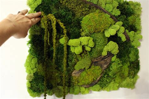 Pillow Moss by Real Moss Wall 16x20 Moss Frame Moss Wall Hanger No