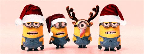 minions merry christmas gifs find share  giphy