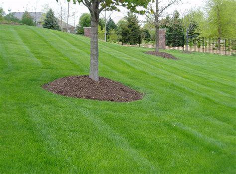 lawn and landscape vip lawn and landscape lawn care
