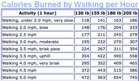7 That Will Burn Calories by Calories Burned Walking Mustaphabel