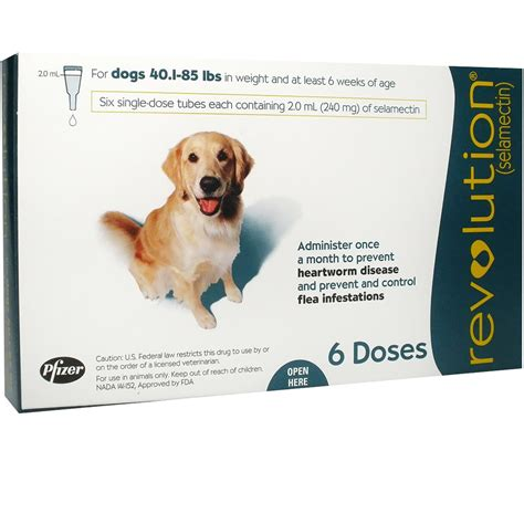 revolution dogs revolution for dogs 40 1 85 lbs 6 mnth