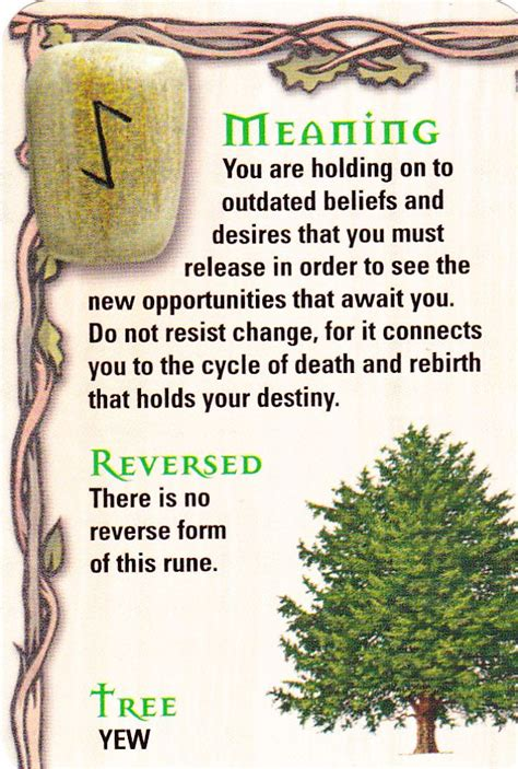 trees and their meanings 17 best images about runes on pinterest trees elder