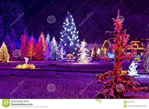christmas fantasy park forest in xmas lights stock