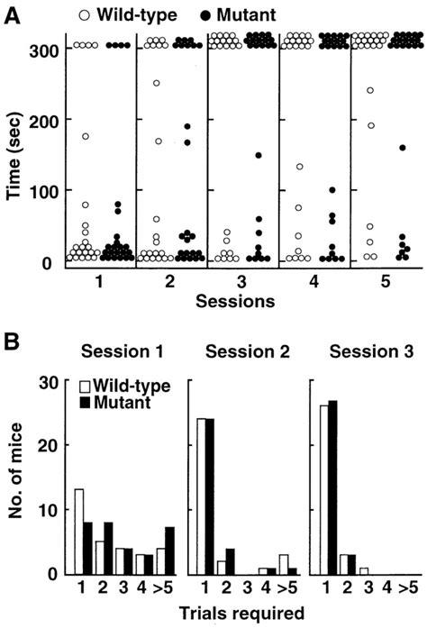 impaired motor coordination deficient cerebellar term depression impaired