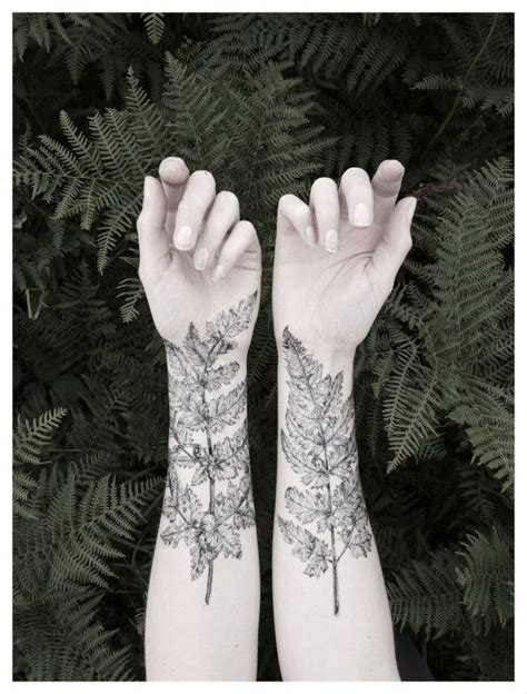 henna tattoos nz 1000 images about fern on ferns new