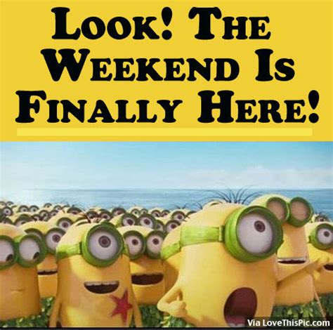 the weekend images look the weekend is finally here pictures photos and