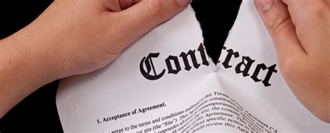 giudicato interno nullit 224 contratto rilevabile d ufficio anche se c 232