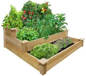 vegetable gardening with raised beds corner
