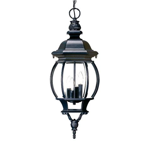 Acclaim Lighting Avian Collection Hanging Outdoor 2 Light Black Hanging Light Fixture