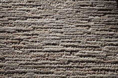 atiyeh rug cleaning atiyeh carpet cleaning carpet menzilperde net