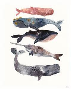 what color are whales 25 best ideas about whale painting on