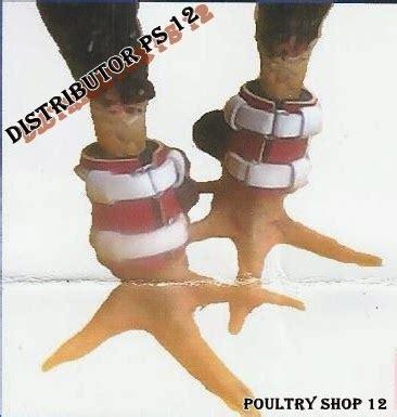 Barbel Terbaru distributor sepatu ayam terbaru masker ayam ring pemberat barbel ayam aduan bungkus taji terbaik