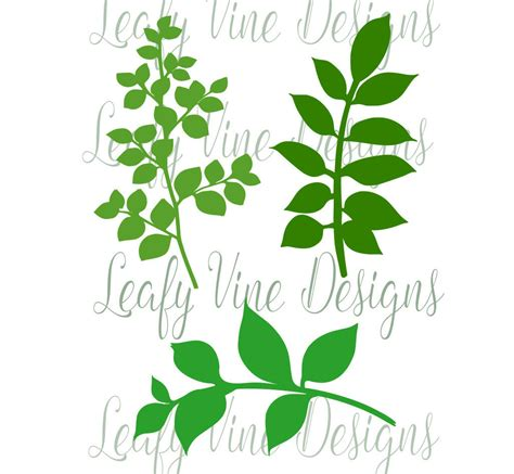 paper leaf template leaf svg template leafy vine set svg cut files vine cut