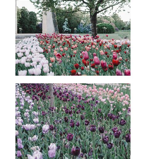 Britzer Garten Tulpen 2018 by Ausflugsziele Berlin Britzer Garten Andysparkles De