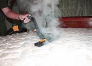 traitement des punaises de lit infestation montr 233 al