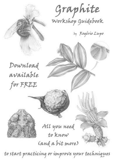 libro botanical drawing using graphite botanical art artists news about botanical art and for botanical artists