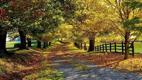 mooie wallpaper van de herfst hd leuke