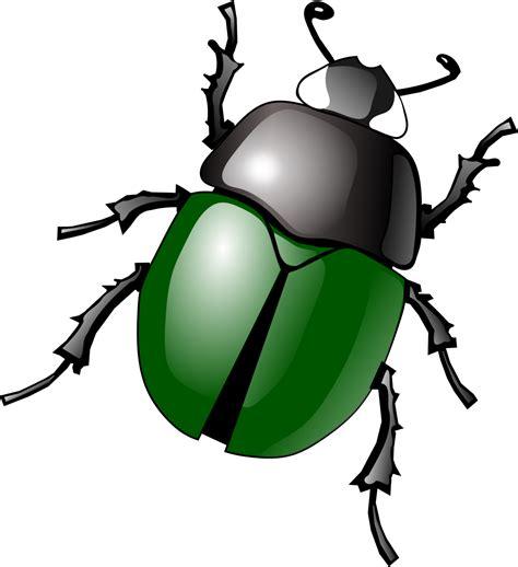 scarab beetle clip art cliparts