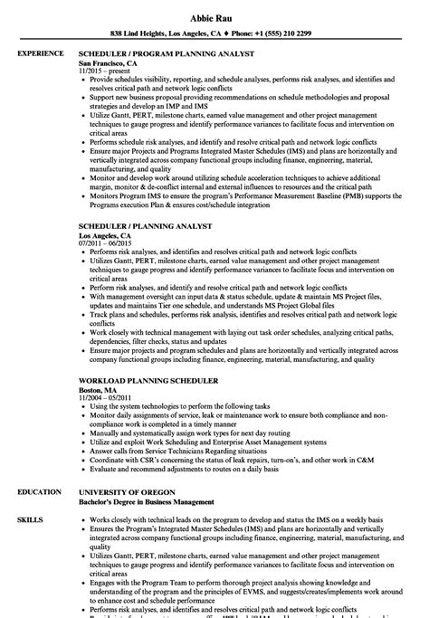 planning scheduler resume sles velvet
