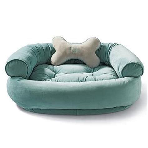 comfy dog beds pinterest the world s catalog of ideas