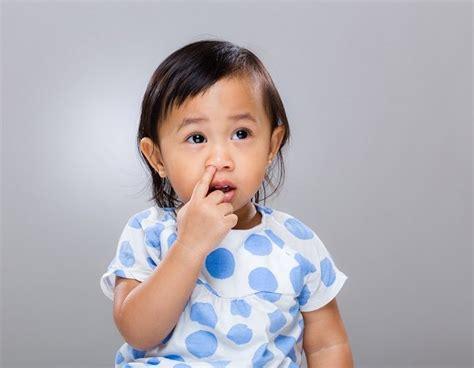 Pengait Benda Asing Telinga Dan Hidung jangan panik lakukan ini saat anak kemasukan benda asing di hidung alodokter