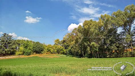 landscape background country landscape with trees background 21036