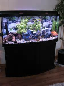 fish tank 72 gallon bow front   72 Gallon Bow Front Oak Tank Stand