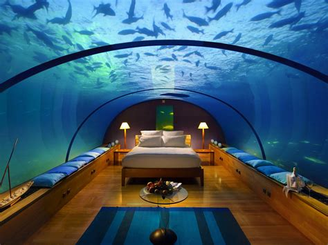 maldives ringali island conrad underwater restaurant part underwater bedroom conrad maldives memsaheb net