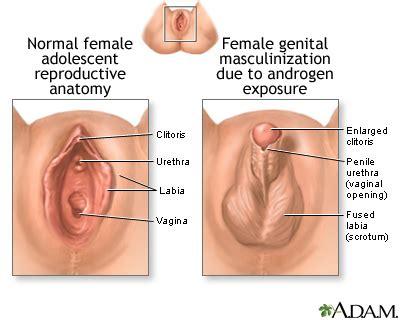types vigina mccarthy stollings vulva normal