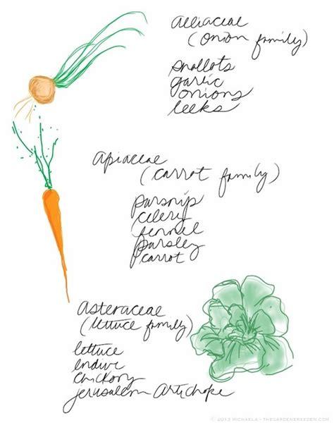plant layout design journal 187 kitchen garden planning part two companion planting