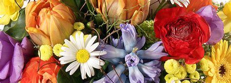 colori dei fiori simbolismo dei colori dei fiori qui potrete conoscere i