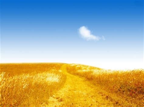 golden village wallpaper 골든 필드 배경 화면 자연 풍경 자연 배경 화면 무료 다운로드