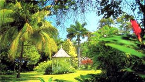 Welcome To Viptoursjamaica Com Vip Tours In Montego Bay Shaw Botanical Gardens