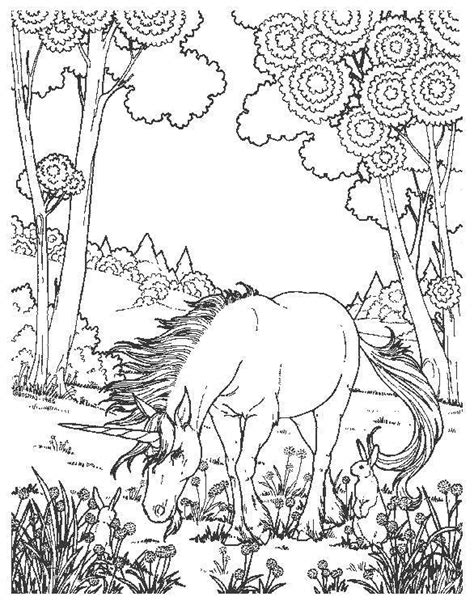 hard coloring pages unicorn coloring pages unicorn picture 12