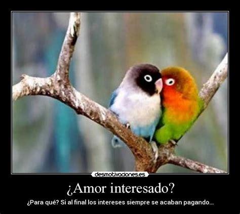 Imagenes Con Frases De Amor Interesado | 191 amor interesado desmotivaciones