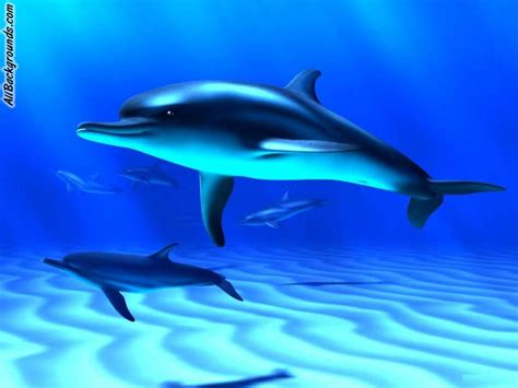 Home Design Pro 3d by Ocean Fish Backgrounds Twitter Amp Myspace Backgrounds