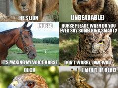 Animal Pun Memes - animal puns weknowmemes