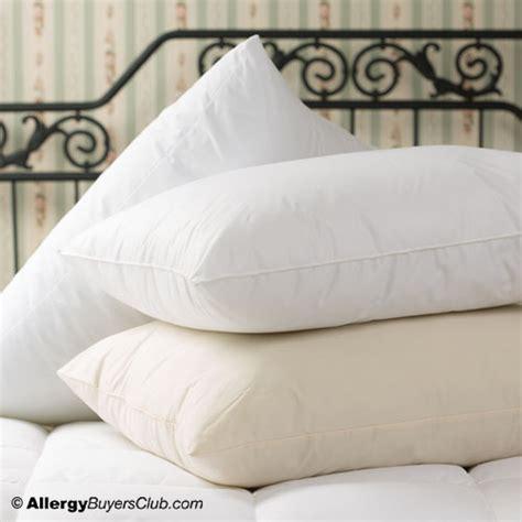 allergy bedding shop allergy bedding hypoallergenic bedding